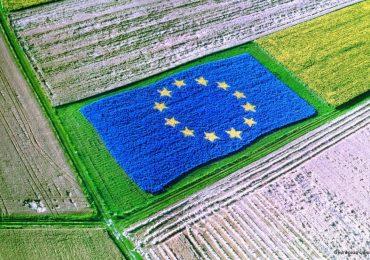 Индикативната годишна работна програма на ПРСР предвижда 494 млн. евро за приеми по 8 мерки и подмерки през 2021 г.