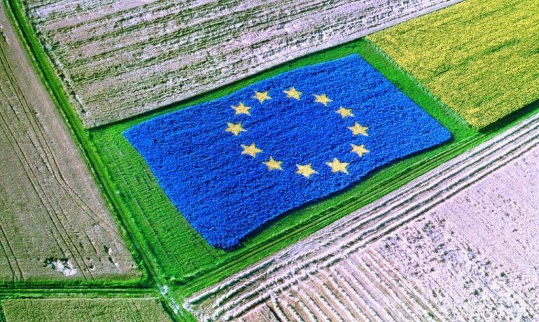 Il piano indicativo 2021 del Programma di Sviluppo Aree Rurali prevede 494 milioni di euro